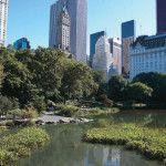 viaje nueva york central park